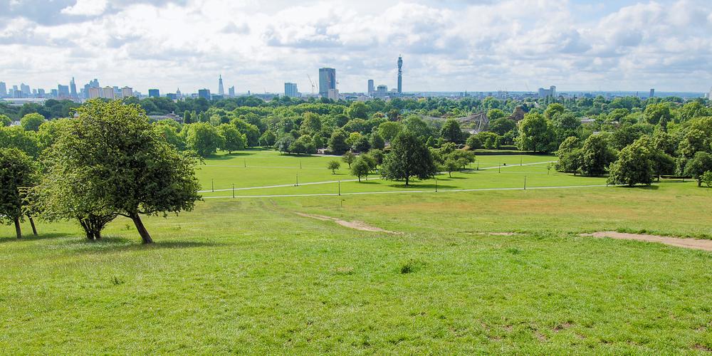 Beautiful View Of Primrose Hill Park