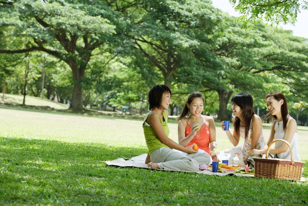 Women Posing Picnicking